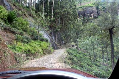 Road is narrow, better not to enjoy the scenery while driving