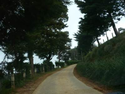 Road to hotel from Kandapola – First 3 km