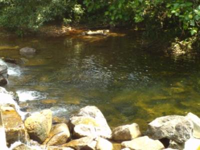 Stream in front of Kanneliya