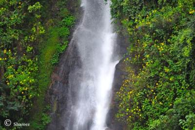 Palagolla Falls close up