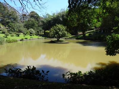 Pond from the other side