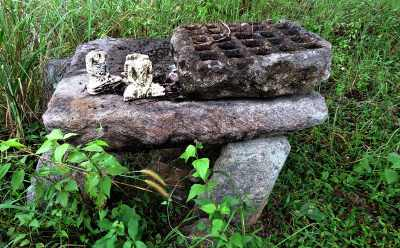 some ruins at Mulagiri viharaya Mullegama