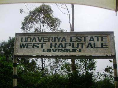 End of Udaveriya Estate