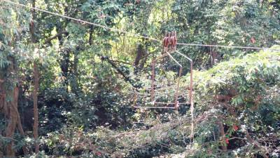 Remains  of old cable service