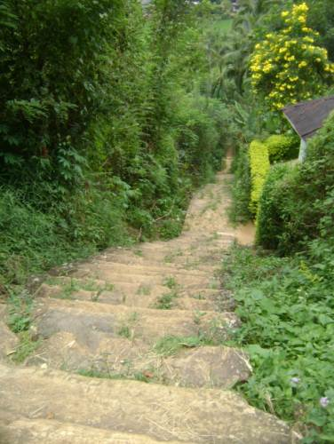 The flight of steps leading to the devalaya where the king used