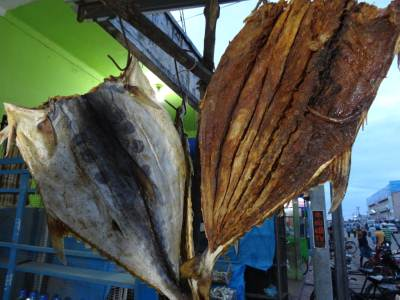 Famous Kattawa dried fish