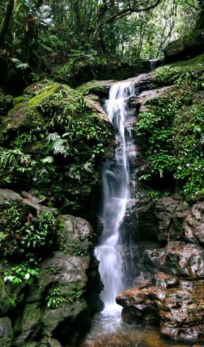 a waterfall at bothiya dola