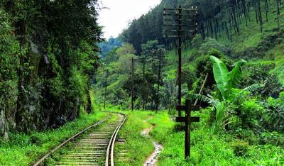 the foot path and the rail road