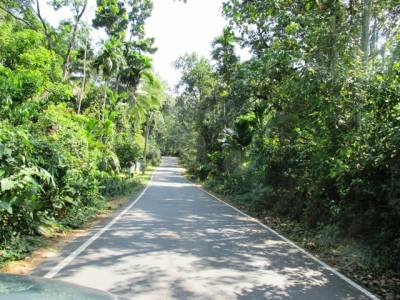 Thummodara/Padukka road well paved and surrounded with lush greenery