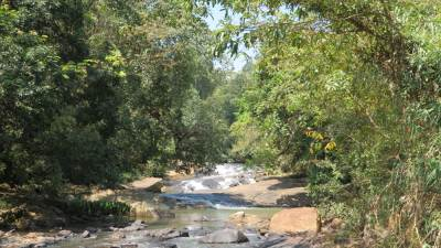 Rakwana River..needs to walk up in the River