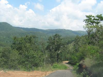 Road to Kaltota Duwili falls
