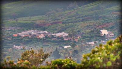 mool oya estate