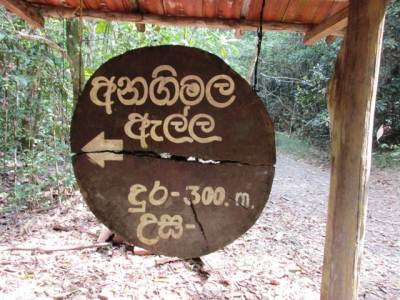 Turn off to Anagimala fall