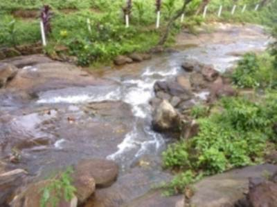 This stream forms the Dambora ella within just 100m – 150 downwards. But there is no clear path to reach the fall