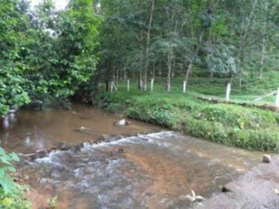The stream which formed RAMMUDUA ELLA                                    (Photo Credit : Sri)