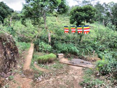 Follow the foot pathway on left hand side of the Mango tree and then follow it towards the hydropower project tunnel