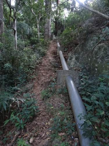 The PVC pipeline laid amid the forest supported by concrete pillars at intervals