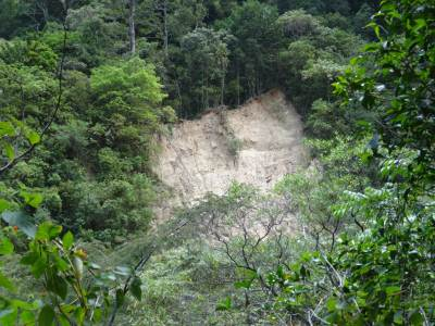 Another massive landslide