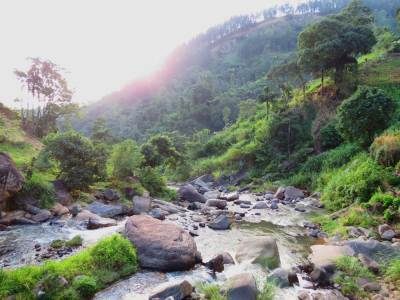 Belihuk Oya (බෙලිහුක් ඔය) started from North West region of Piduruthalagala range. This forms Kabaragala cascades.