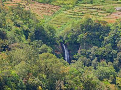The top of waterfall can be reached from Kabaragala estate.