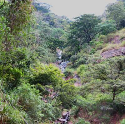Lower parts of this cascade. Captured at Padiyapelalla-Kandy road.