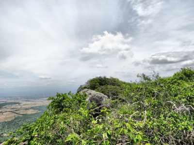 The highest point of Sinhagala-But it is not a good view point due to surrounding trees.