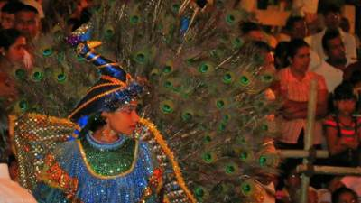a peacock dancer