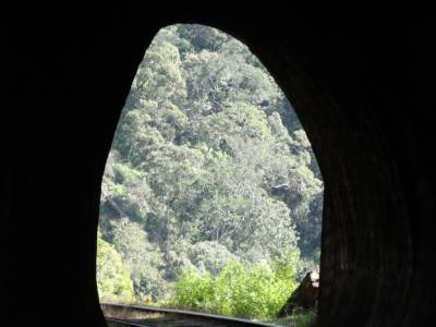 The view through the tunnel