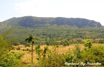 Manigala mountain with a prosperous faddy field