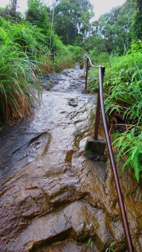 Iron bars were helpful as pathway was slippery following rain.