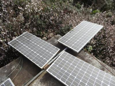 The solar panels, we cleaned the plates brushing the leaves and flowers away