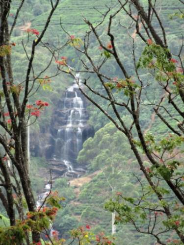 Another look of Glassaugh Falls