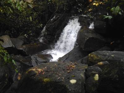 Small cascade below the first fall