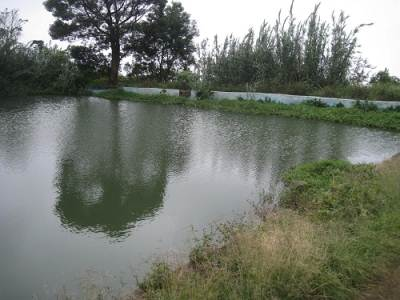 An old Pond which was made by Englishmen