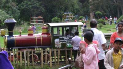 Little train at Victoria Park N'Eliya.