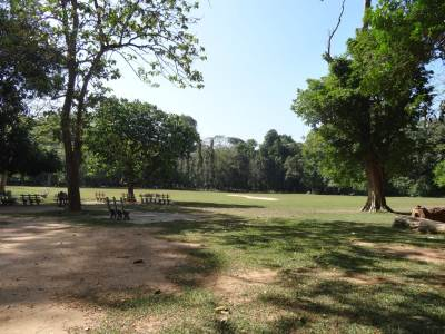 One of the two cricket grounds, most of the benches were occupied by the couples