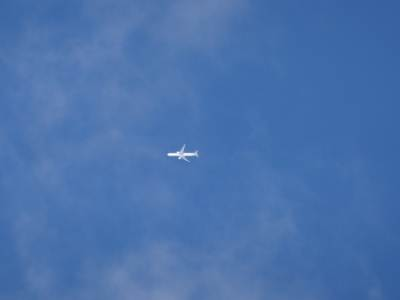 One out of plenty of airliners... We saw one very close to the Agra Bopath