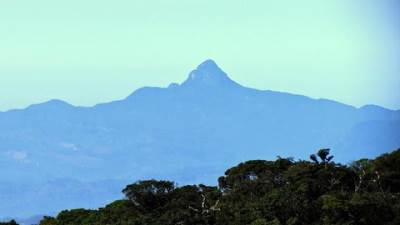 adams peak as seen from piduruthalagala