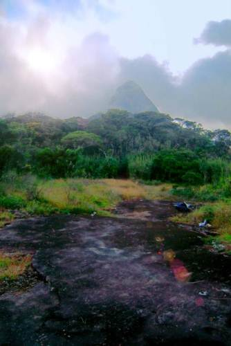 Holly place – Sandagathenna ……….Holly mountain was embraced with mist cover          ..         PHOTO: PRASAD