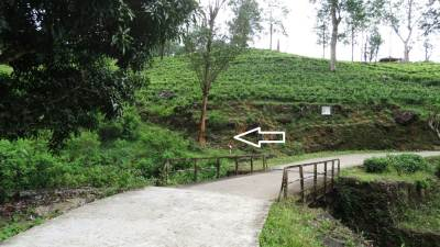 Foot pathway from main road to reach Sari Ella