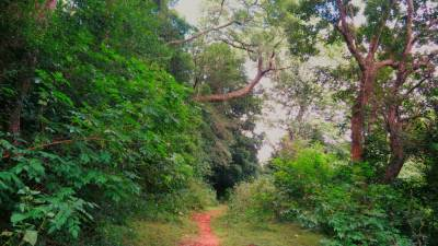 Road gets narrow after Poththatawela village