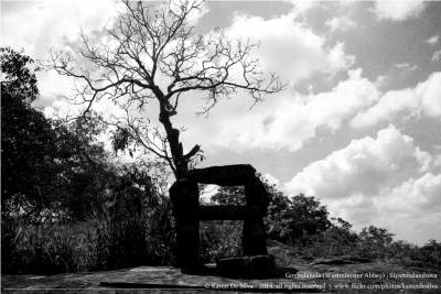 The king's seat (Rajaasanaya)