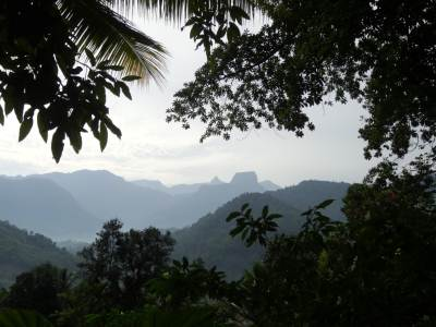The Sri Pada Mountain and Kunudiya Pawwa looking like Sigiriya in the distance