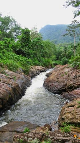 You will come across the water stream and walk on the side/along the water stream in left hand side to view the waterfall