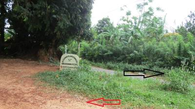 Black arrow shows the direction to Yatawaththa, red arrow shows towards Selagama estate