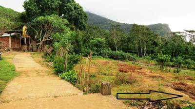 Kovil and the marshy land. Arrow shows the direction towards the waterfall