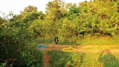 Important four way junction. Red arrow shows our way from Kaikawala. Yellow arrow shows Karambakatiya side. If you are coming by a vehicle from Deenstone side or from Meemure, you have to use this road. Blue arrow shows the way towards Na-Ela. Black arrow shows the foot pathway from Kalugala (කලුගල).