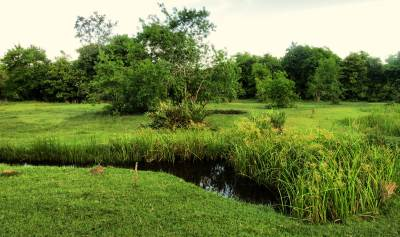 the huge grass land near BOB Kahandamodara adjoining the lagoon, this is a nice place to explore