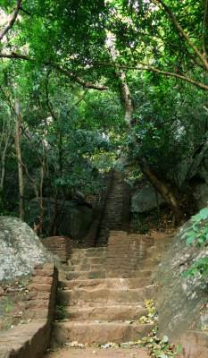 Steps at Pidurangala