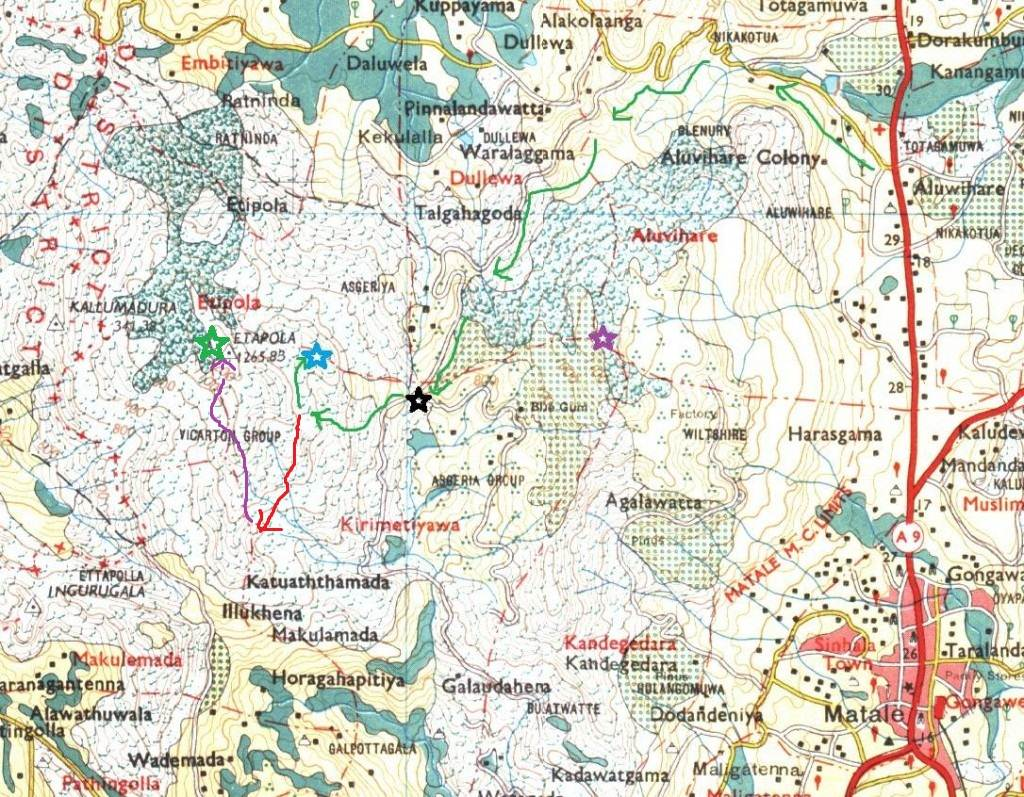 Same map taken from Ashan's Brandy rock report. Green arrows show our way. Black star shows Asgiriya lime house junction/3 way junction. Blue star shows Brandy rock. Red arrow shows our way back up to other end of the mountain. Purple arrow-climbing along the edge of the mountain. Green star-Etipola peak.